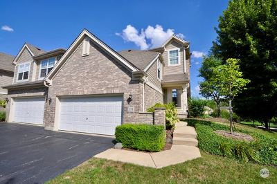 Oswego Condo/Townhouse For Sale: 171 River Mist Drive
