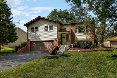 Woodridge Single Family Home For Sale: 2708 Ravinia Lane
