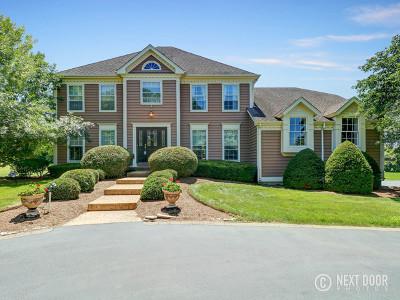 St. Charles Single Family Home For Sale: 5n852 East Ridgewood Drive