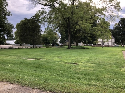 Ogle County Residential Lots & Land For Sale: 311 North Green Avenue