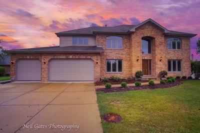 Frankfort Single Family Home For Sale: 21971 Emily Lane