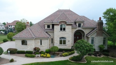 Orland Park Single Family Home For Sale: 136 Singletree Road