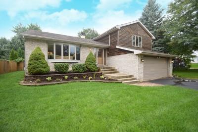 Bartlett Single Family Home For Sale: 1166 Morning Glory Lane