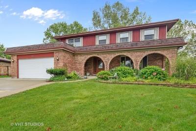 Schaumburg Single Family Home For Sale: 1129 Beachcomber Drive