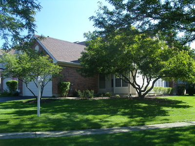 Hoffman Estates Condo/Townhouse For Sale: 2202 Seaver Lane