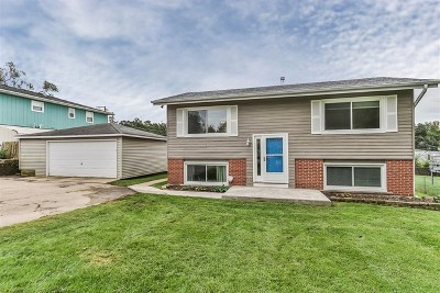 South Elgin Single Family Home For Sale: 319 Crystal Avenue