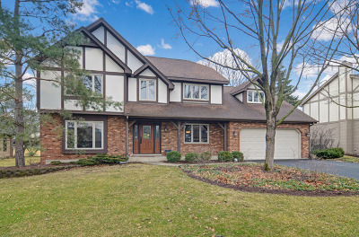 Burr Ridge Single Family Home For Sale: 8613 Dolfor Cove