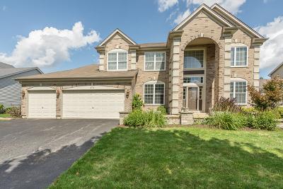 Oswego Single Family Home For Sale: 218 Liszka Lane