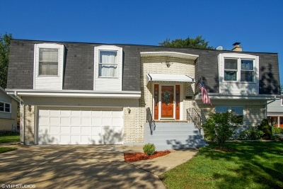 Palatine Single Family Home For Sale: 1136 North King Arthur Court