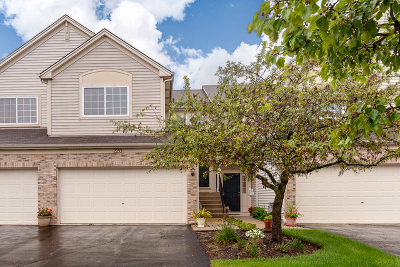 South Elgin Condo/Townhouse For Sale: 220 Courtland Drive #B