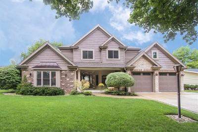 Arlington Heights Single Family Home For Sale: 306 South Harvard Avenue