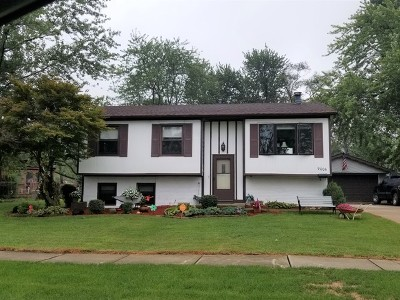 Orland Park Single Family Home For Sale: 9006 Poplar Drive