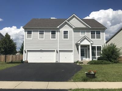 Joliet Single Family Home For Sale: 900 Plaintain Drive