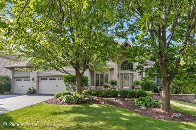 Breckenridge Estates Single Family Home For Sale: 720 De Lasalle Court