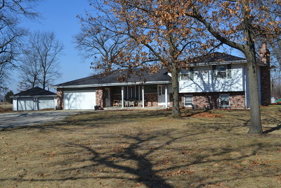 Braceville Single Family Home For Sale: 35010 South State Route 129