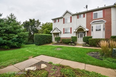 Elburn Condo/Townhouse For Sale: 431 East Willow Street