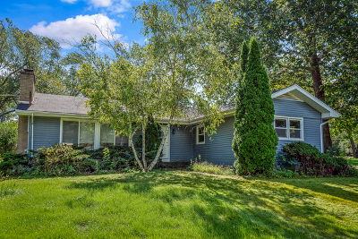 Wheaton Single Family Home For Sale: 1519 Foothill Drive