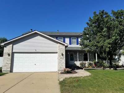 Plainfield Single Family Home For Sale: 1209 Brookfield Drive