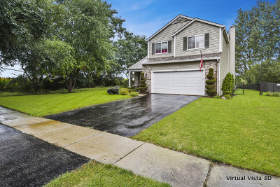 Oswego Single Family Home For Sale: 813 Blossom Lane