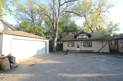 Palatine Single Family Home For Sale: 349 West Palatine Road
