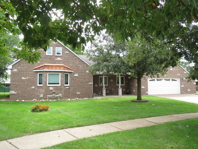 Minooka, Channahon Single Family Home For Sale: 23513 West Frances Court