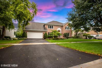 Woodridge Single Family Home For Sale: 6709 Greene Road