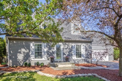 Naperville Single Family Home For Sale: 5s756 Westwind Drive