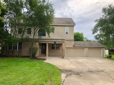 Schaumburg Single Family Home For Sale: 1415 Marion Street