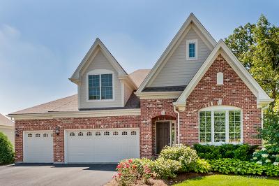 Wheaton Single Family Home For Sale: 25w659 Prairie Avenue