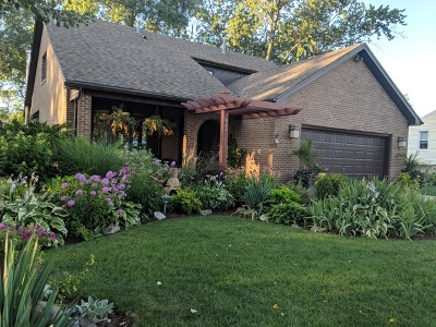 Downers Grove Single Family Home For Sale: 1024 Norfolk Street