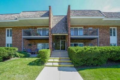 Downers Grove Condo/Townhouse New: 4039 Saratoga Avenue #C105