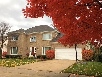 Naperville Single Family Home For Sale: 419 Millcreek Lane