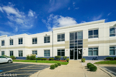 Mokena, Frankfort Commercial For Sale: 9930 West 190th Street #D