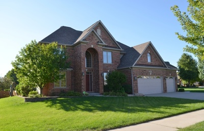 Plainfield Single Family Home For Sale: 26024 Whispering Woods Circle