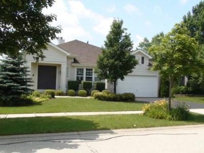 Buffalo Grove Single Family Home For Sale: 2380 Apple Hill Lane