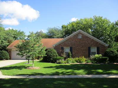 Bourbonnais Single Family Home For Sale: 240 Lexington Court