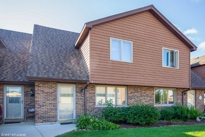 Naperville Condo/Townhouse Price Change: 469 Valley Drive #3