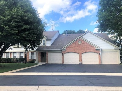 Schaumburg Condo/Townhouse For Sale: 1258 Rosewood Court #C1