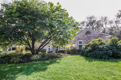 Downers Grove Single Family Home For Sale: 1401 Golden Bell Court