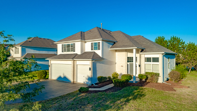 Bolingbrook Single Family Home For Sale: 700 Tall Grass Drive