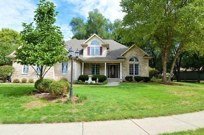 Minooka, Channahon Single Family Home For Sale: 22853 South Anna Drive