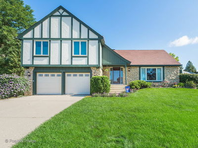 Glen Ellyn Single Family Home For Sale: 842 Crest Court