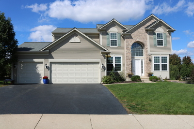 Oswego Single Family Home For Sale: 225 Foster Drive
