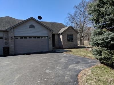 Woodstock Single Family Home For Sale: 640 East Calhoun Street