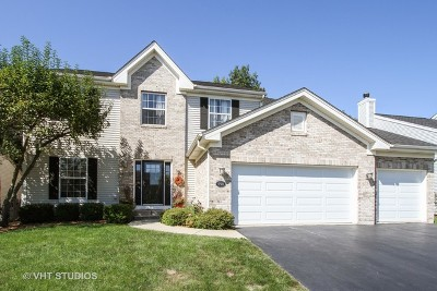 Round Lake Single Family Home For Sale: 598 Overlook Trail