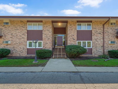 Glen Ellyn Condo/Townhouse For Sale: 505 Kenilworth Avenue #8