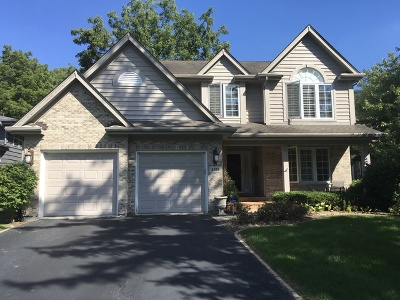 Downers Grove Single Family Home For Sale: 4919 Woodward Avenue