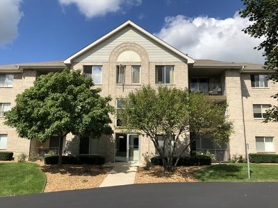 Oak Forest Condo/Townhouse For Sale: 6830 Ridge Point Drive #3D