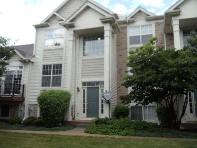 Joliet, Shorewood Rental For Rent: 802 Summit Creek Drive