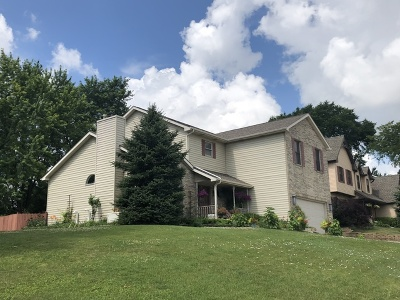 Bartlett IL Single Family Home For Sale: $434,900